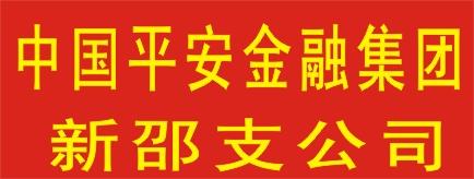 中国平安综合金融集团新邵支公司-益阳招聘