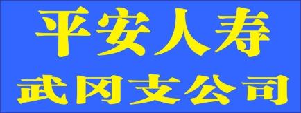 平安人寿武冈支公司-益阳招聘