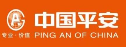 中国平安综合金融服务集团-益阳招聘
